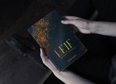 O'Riyerdan Chronicles - Leif de Julie Horn